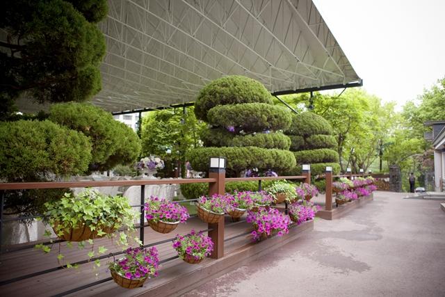 정원.jpg